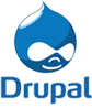 Drupal Customization Services India
